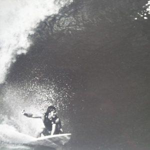 Reno large wave surfing