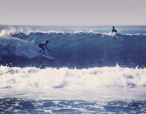 cattell_best_wave_485